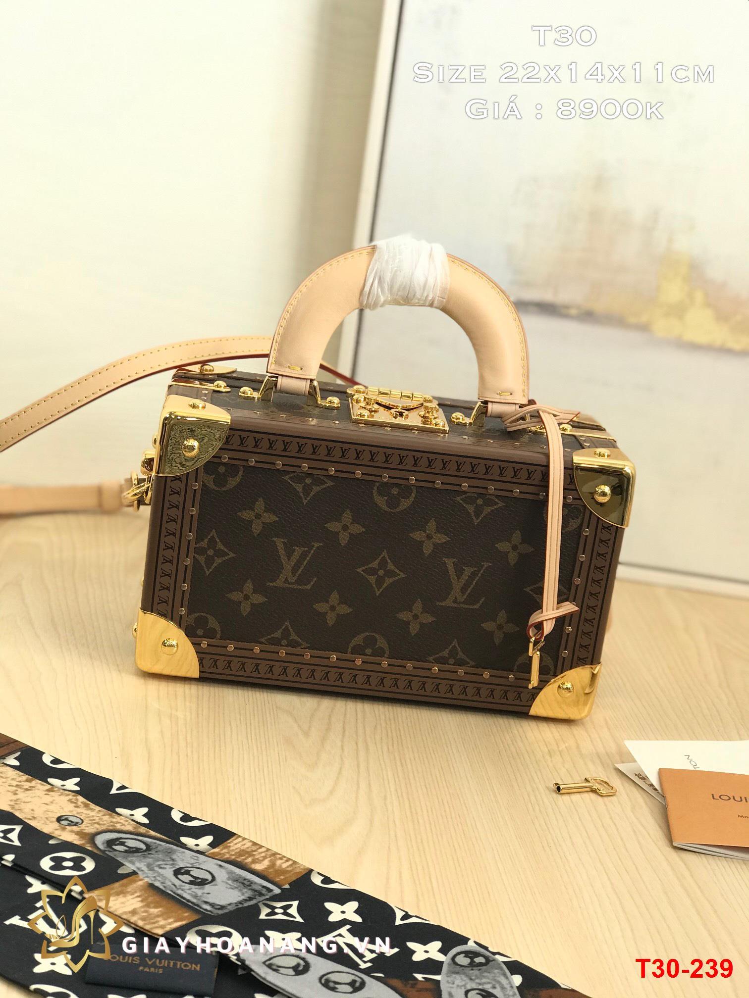 T30-239 Louis Vuitton túi size 22cm siêu cấp