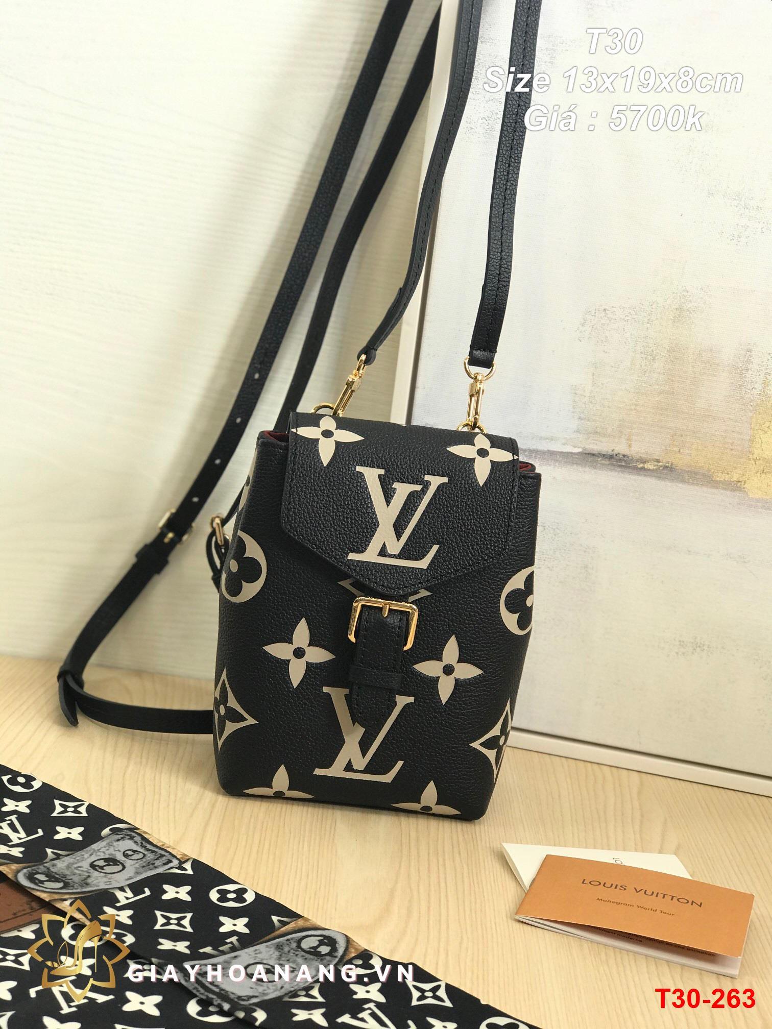 T30-263 Louis Vuitton túi size 13cm siêu cấp