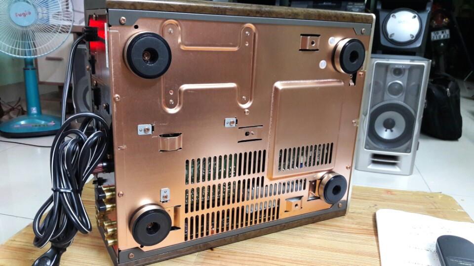 Bose PLS 1310