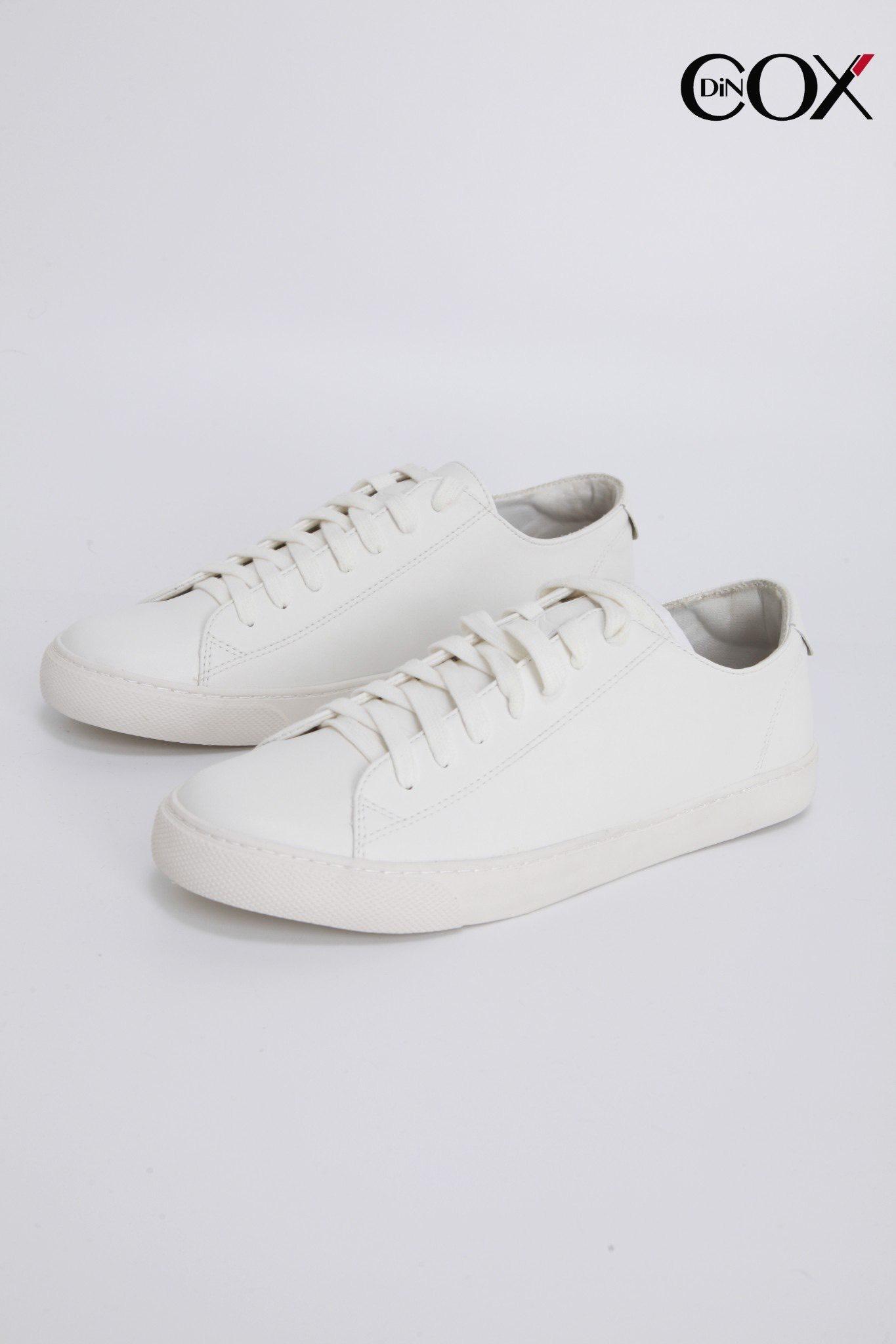 dincox2234-white