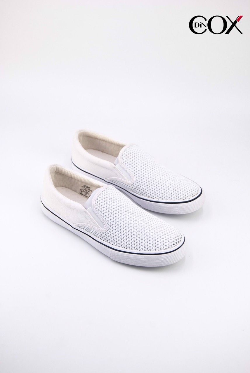 dincox1001-white