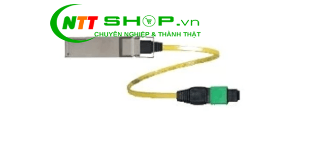 Module quang Dell 407-BBTP Transceiver, 40GbE QSFP+ PSM4 with 1m pigtail MPO SMF, 2km