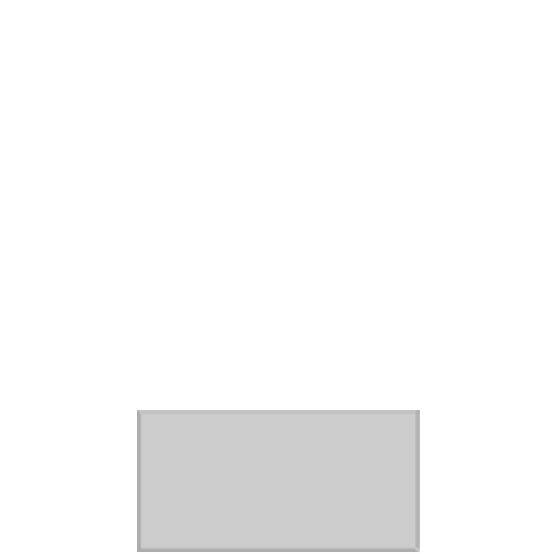 Gạch hình chữ nhật mặt bóng 10x20