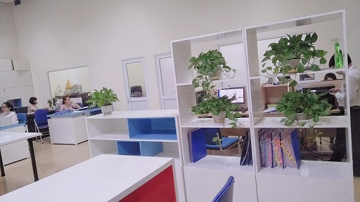 hình ảnh tại văn phòng công ty TFV Industries