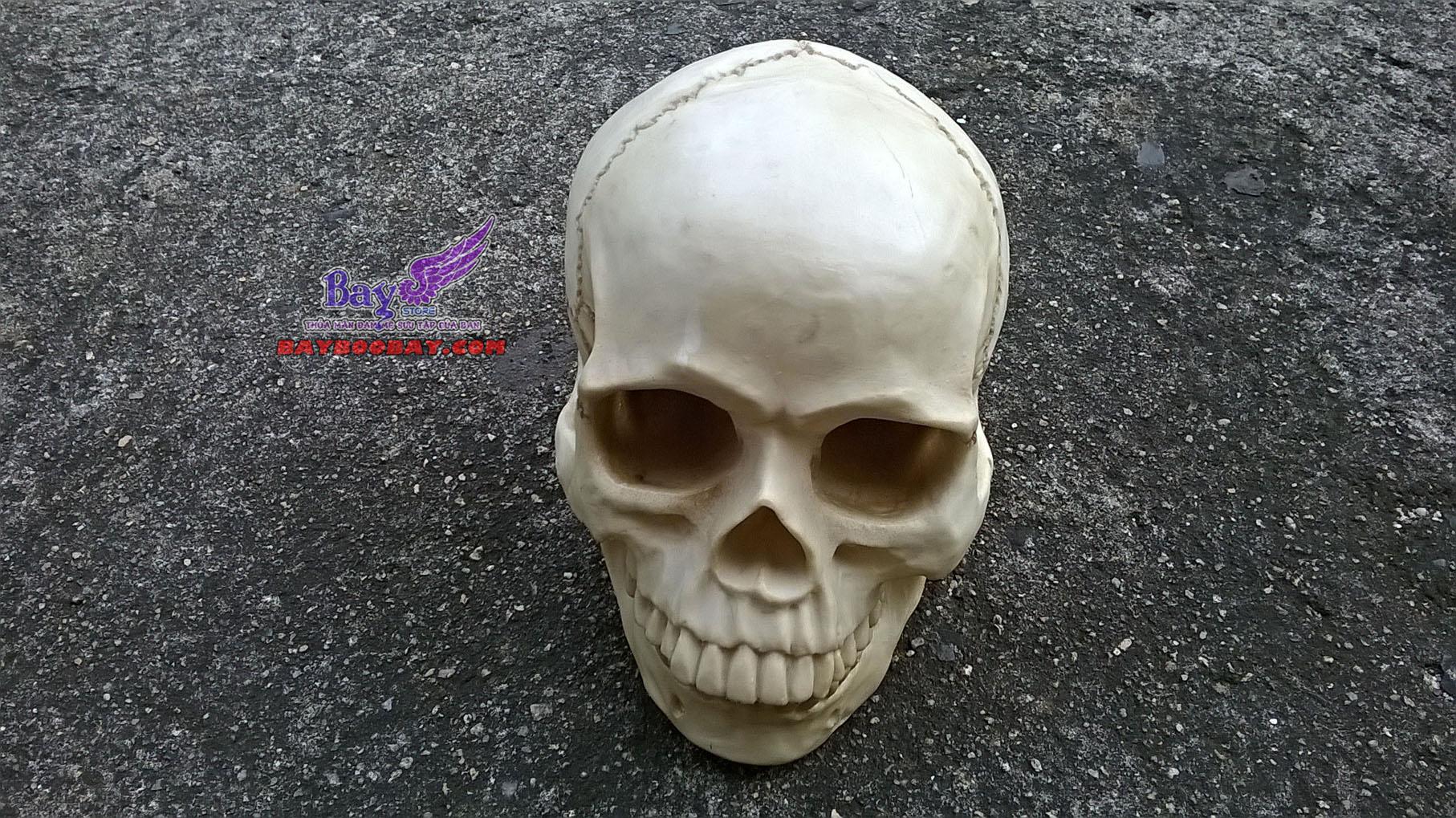 Đầu lâu skull
