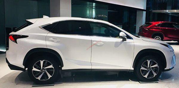 thân xe lexus nx300 2021