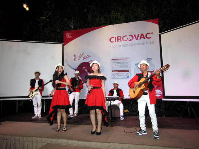 Ban nhạc acoustic - Ban nhạc Flamenco Tumbadora