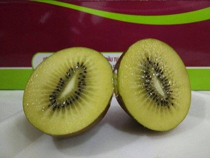Kiwi vàng Zespri