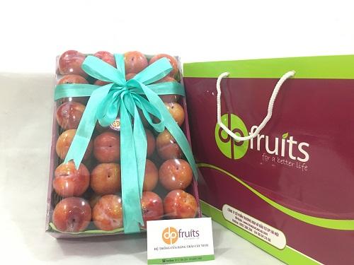 Hộp quà trái cây DPF1