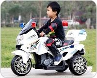 Xe điện môtô 2 - 3 bánh