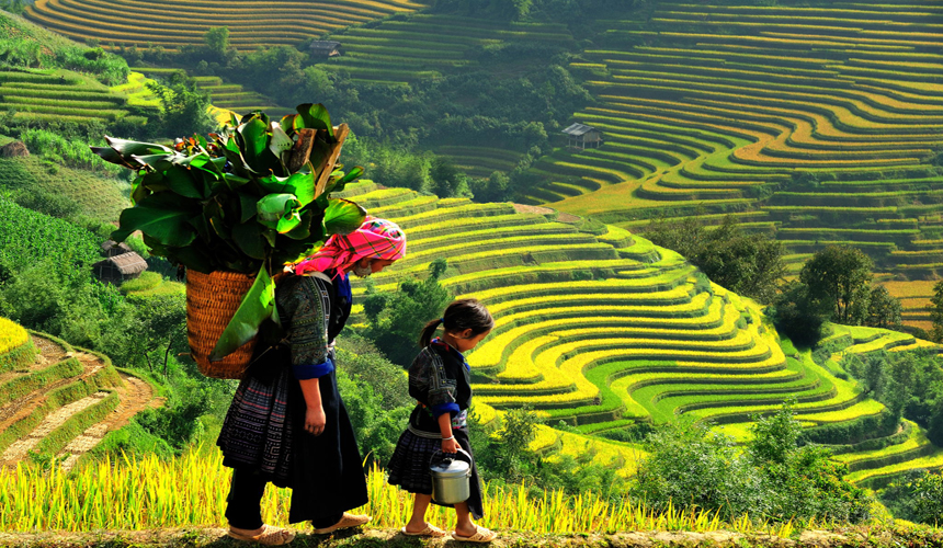 Du lịch Hà Nội - SApa - Hà Nội 2 ngày 1 đêm chỉ 1250k