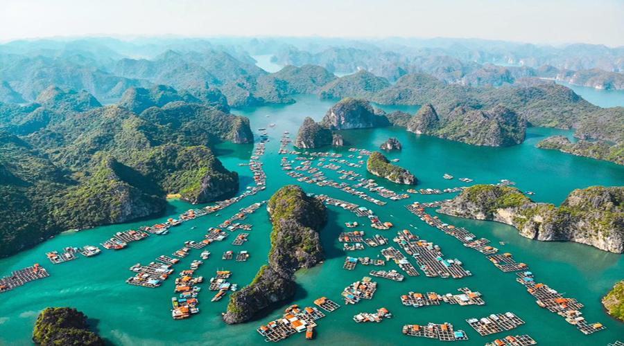 Tour Cát Bà, Hải Phòng Dịch Vụ Du Lịch Tốt Nhất 2021- CHỈ 1.490.000Đ