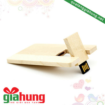 usb-the-bang-go-056