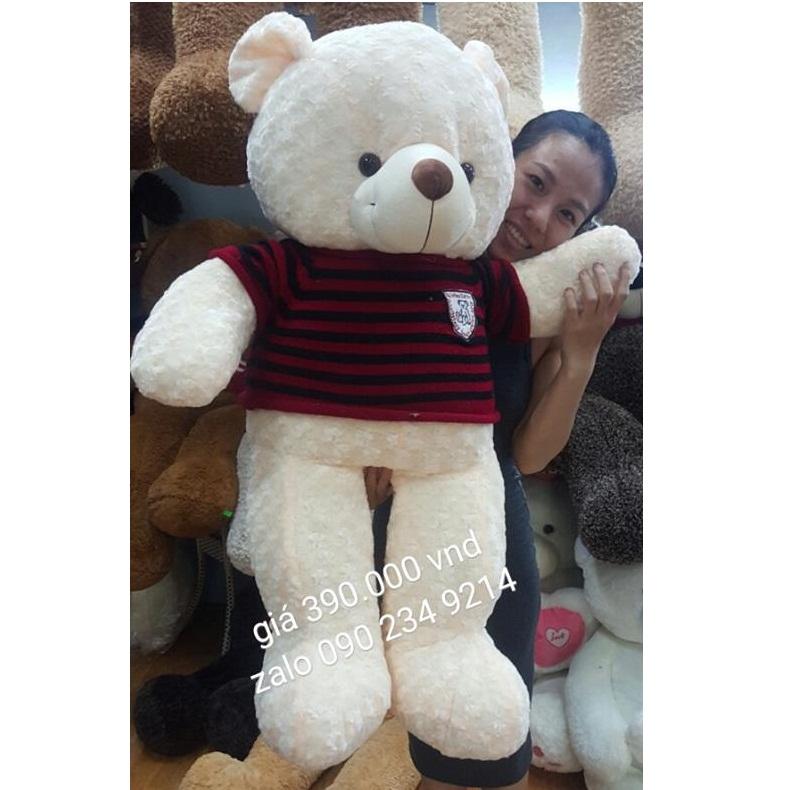 Gấu Teddy 1m5