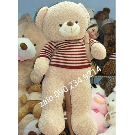 Gấu bông khổng lồ tặng bạn gái