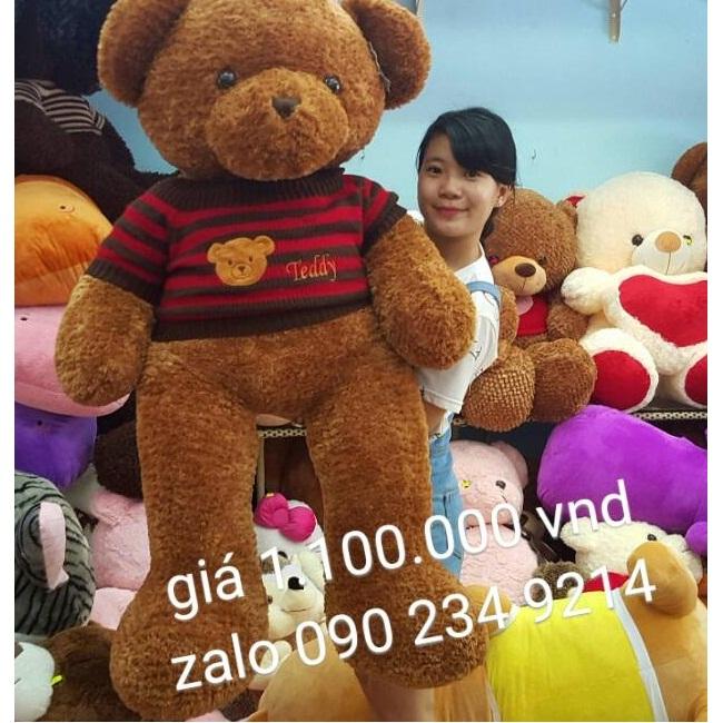 Gấu bông teddy xịn mắt có chữ teddy