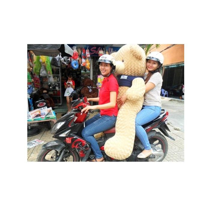 Gấu bông teddy 1m8 đẹp to giá rẻ nhất 03