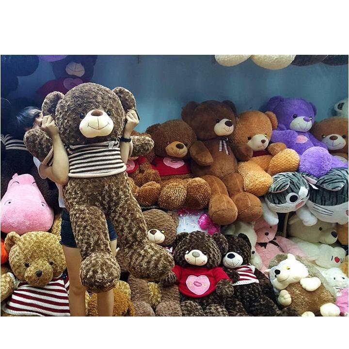 Gấu teddy Choco ngoại nhập cao cấp 03