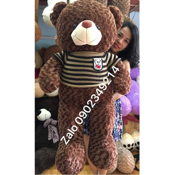 Gấu bông teddy cỡ lớn 1m5
