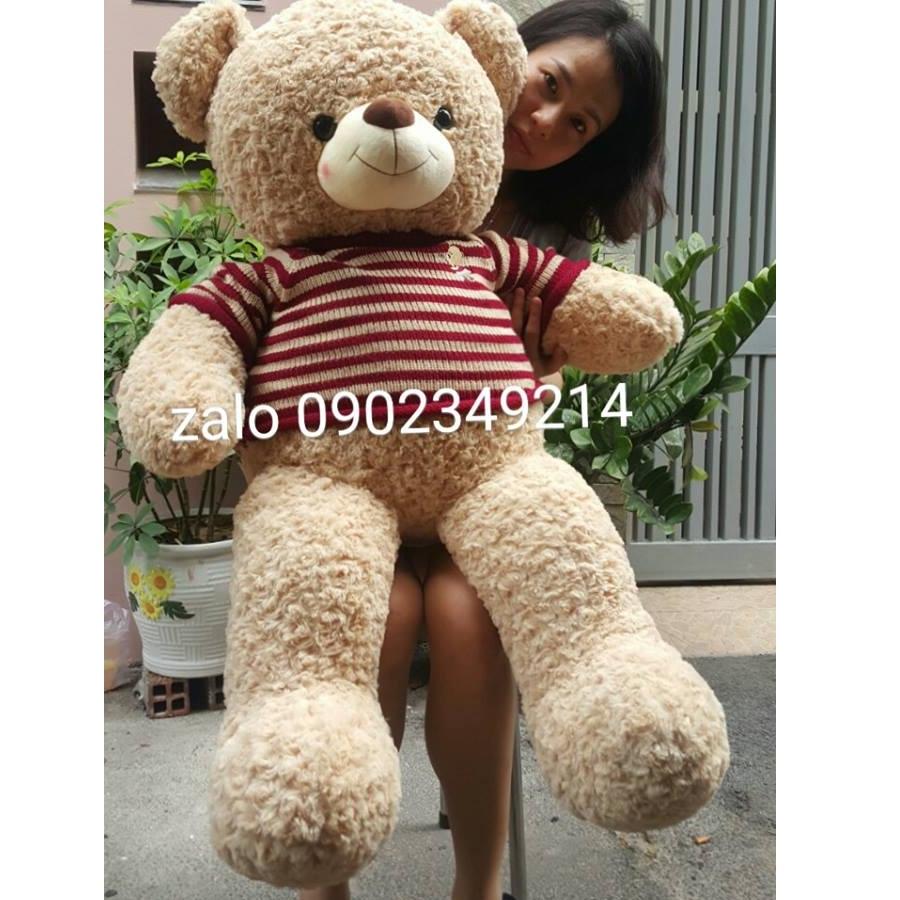 Gấu bông dễ thương choco be 1m4