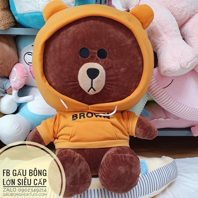Gấu nâu brown mặc áo hoodie