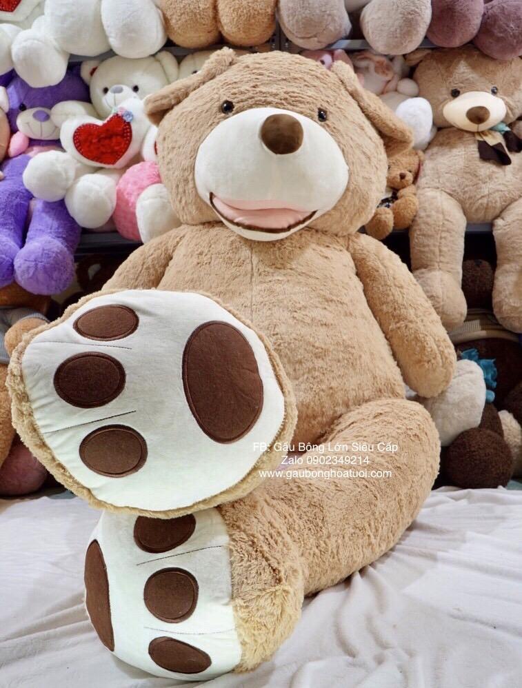Gấu teddy bear & me 2m6