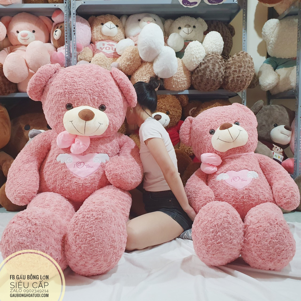 Gấu bông màu hồng ngoại nhập 1m6