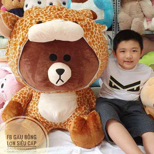 Gấu Brown hươu cao cổ 1m5