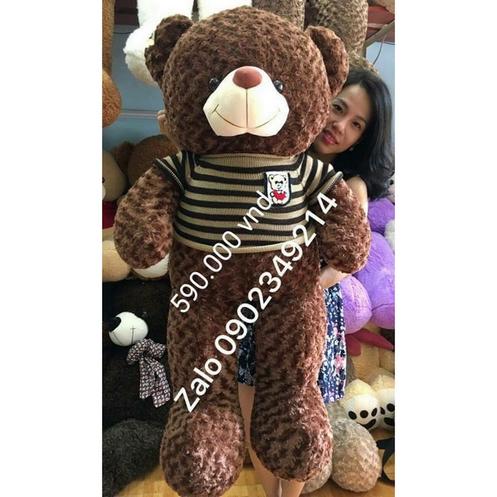Gấu bông 1m5