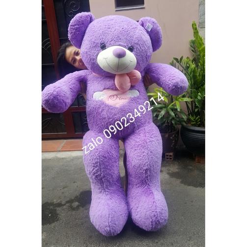 Gấu teddy màu tím nơ 1m8
