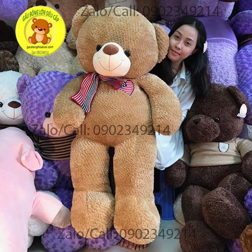 Gấu bông choàng khăn Mỹ size 1m5