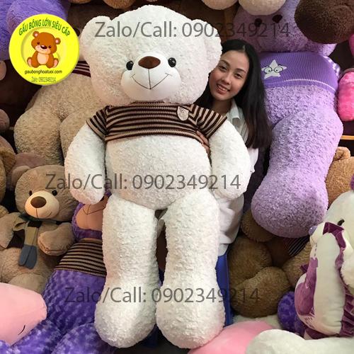 Gấu bông trắng lông xoắn size 1m5
