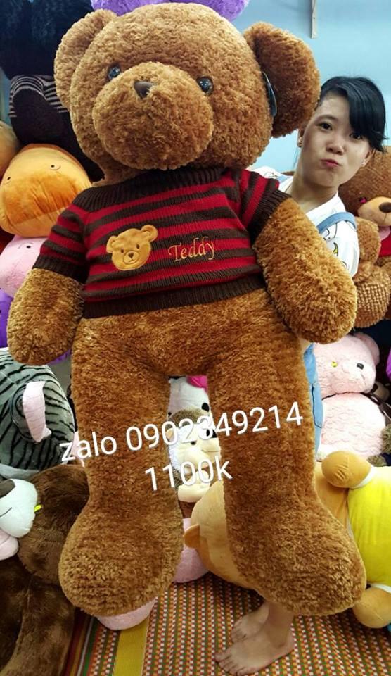 Gấu bông teddy xịn mắt có chữ teddy 01