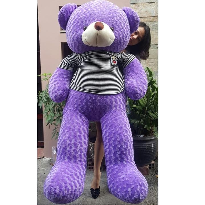 Gấu bông màu tím đẹp 03