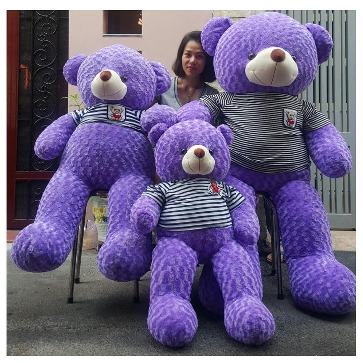 Gấu bông màu tím đẹp