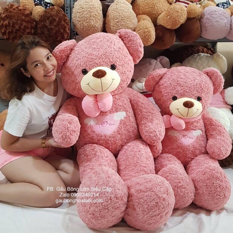 Gấu teddy màu hồng angle 1m4