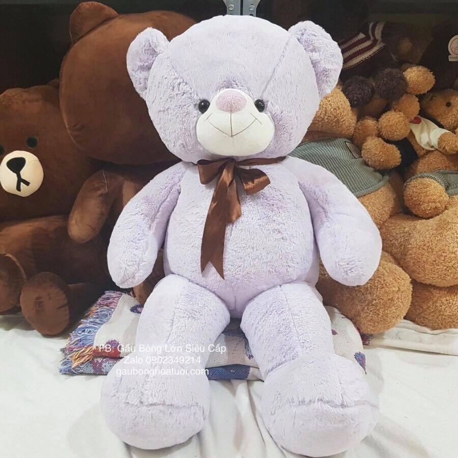 Gấu Teddy lông bột 1m tím hợp cho bé