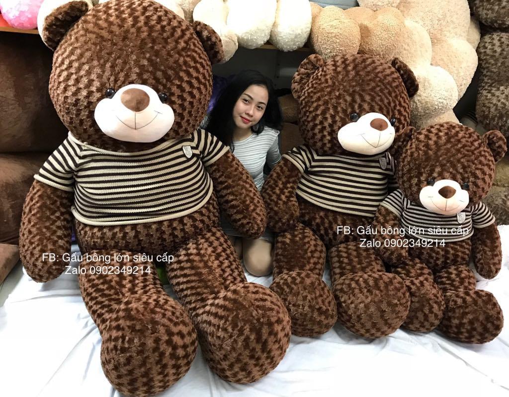 Gấu teddy khổng lồ 2m2 cao cấp