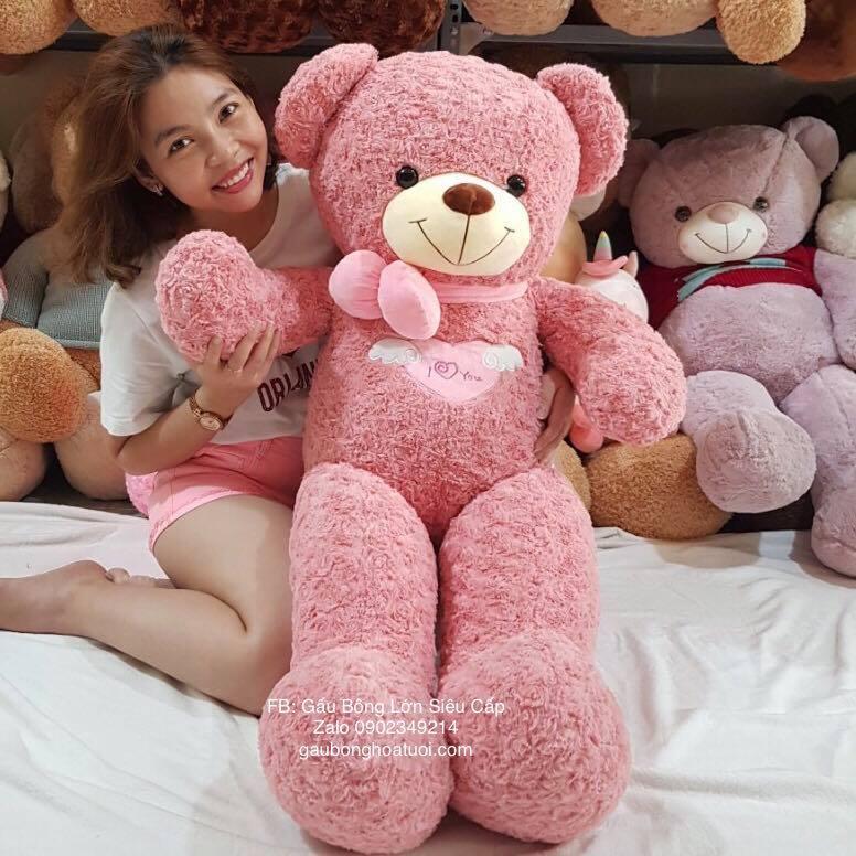 Gấu bông teddy màu hồng ngoại nhập 1m4