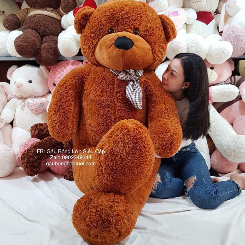 Gấu Bông Teddy To 2m