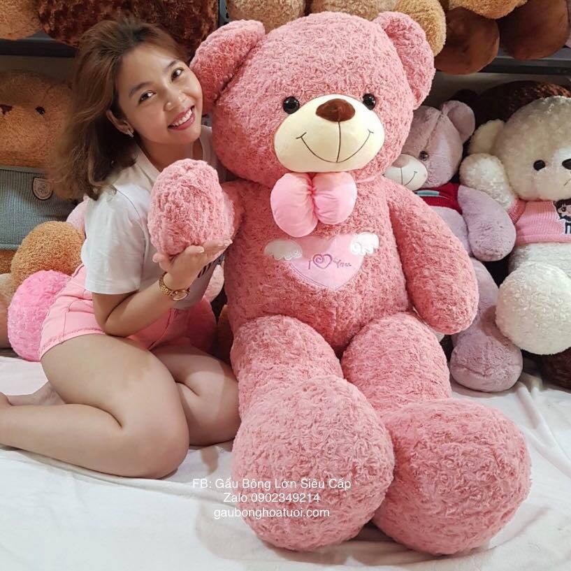 Gấu bông teddy màu hồng ngoại nhập 1m6