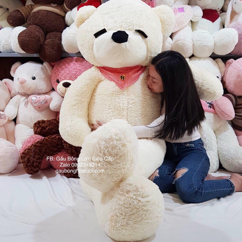Gấu bông ngủ quàng khăn 2m2