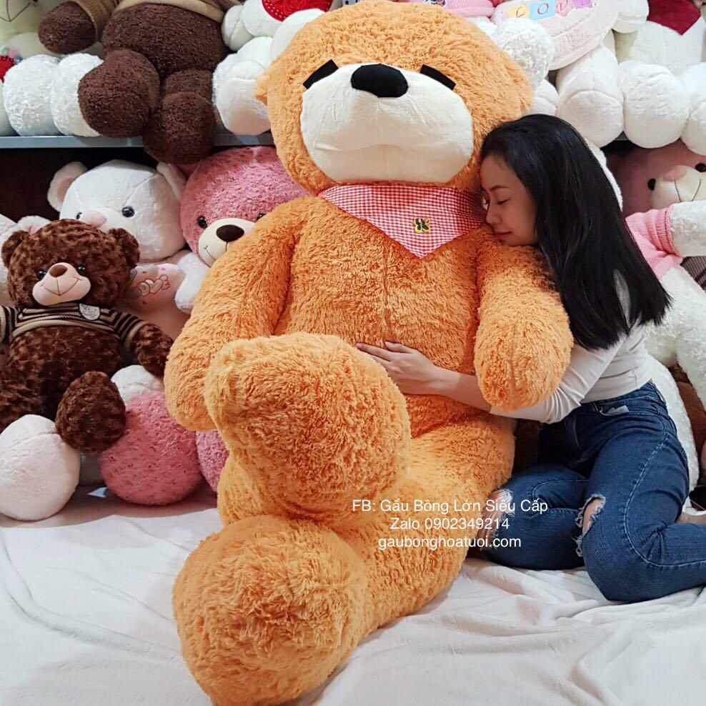 Gấu bông ngủ 2m2