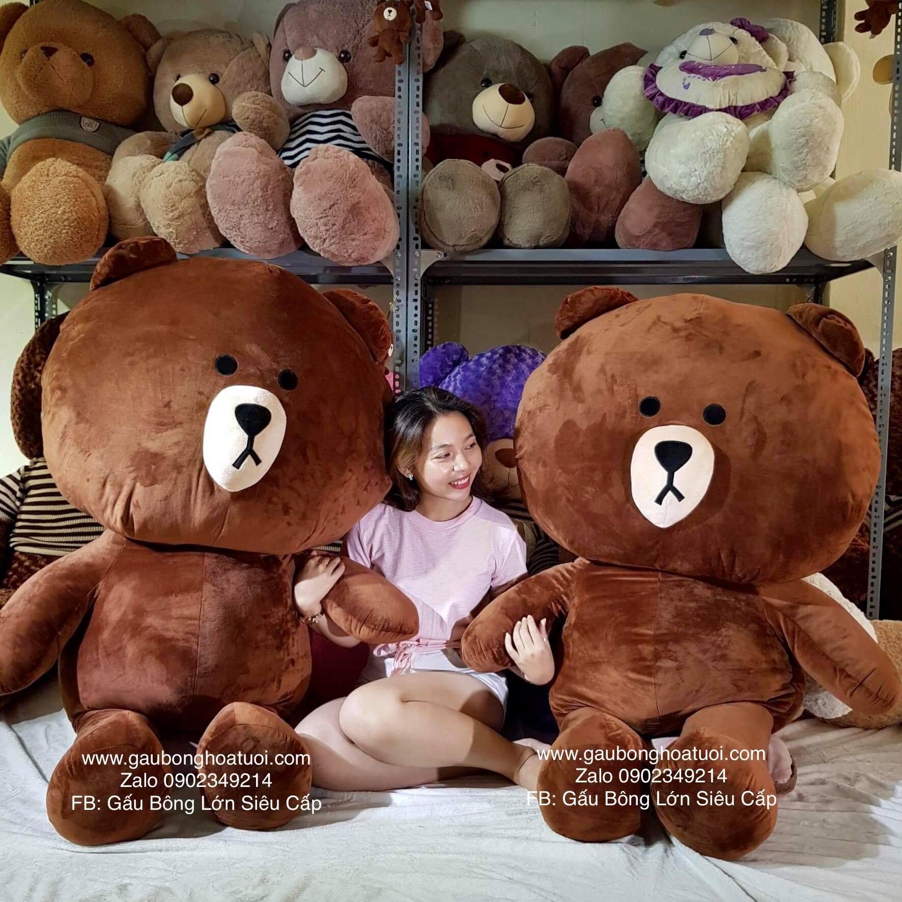 Gấu nâu Brown khổng lồ