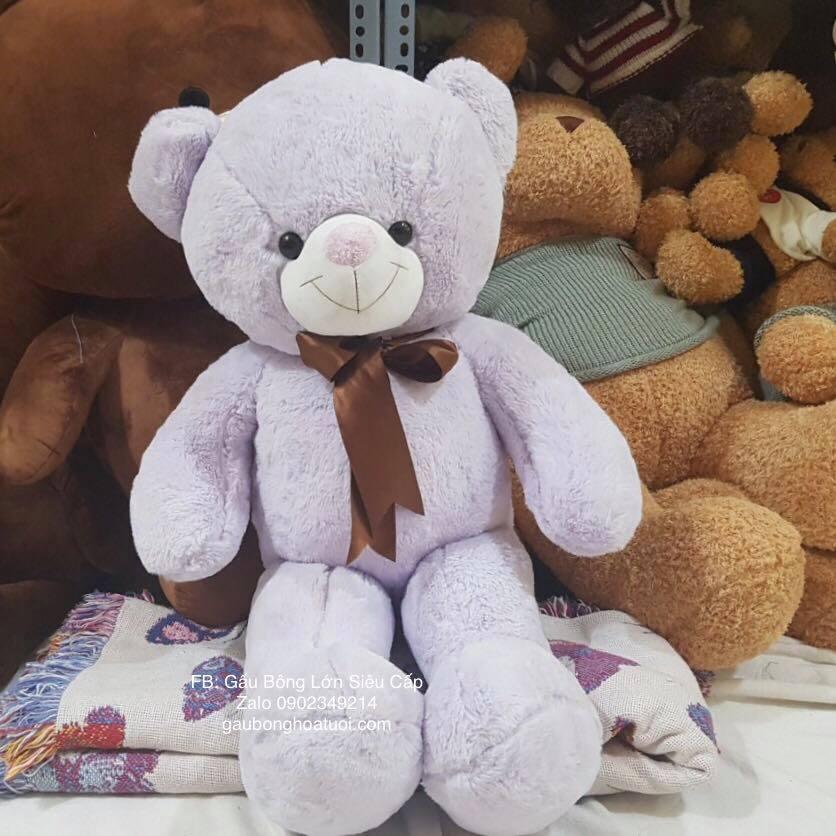 gấu teddy màu tím 1m2