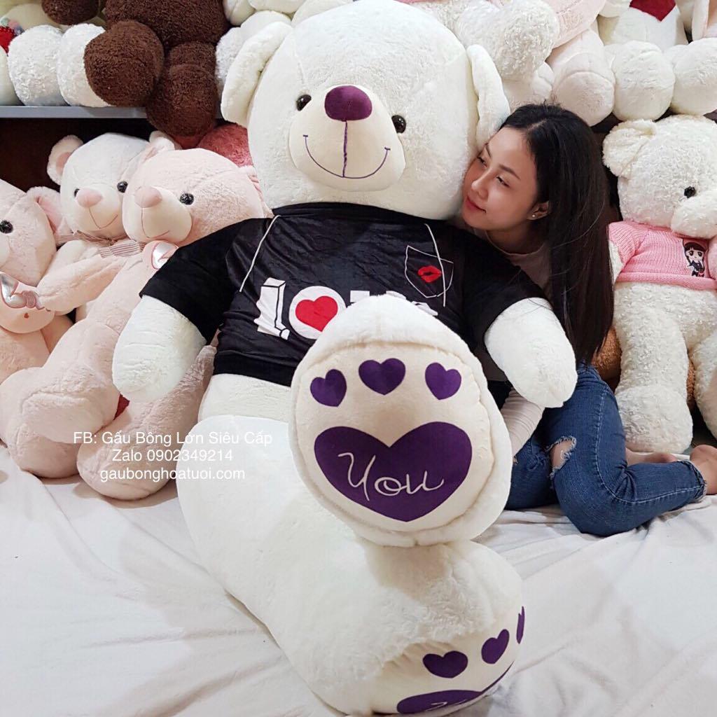 Teddy áo nhung đẹp 1m6