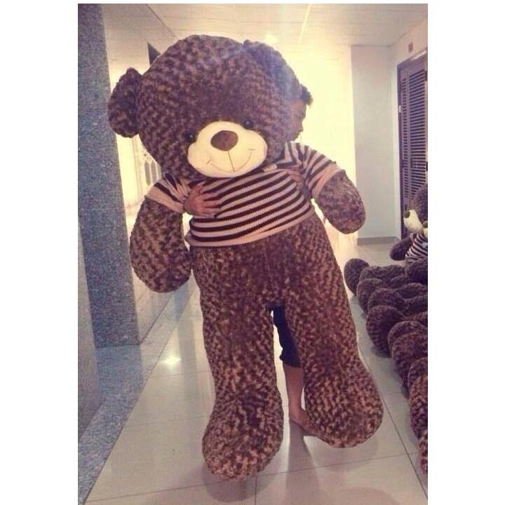 Gấu bông cao cấp Choco ngoại nhập 1m6 01