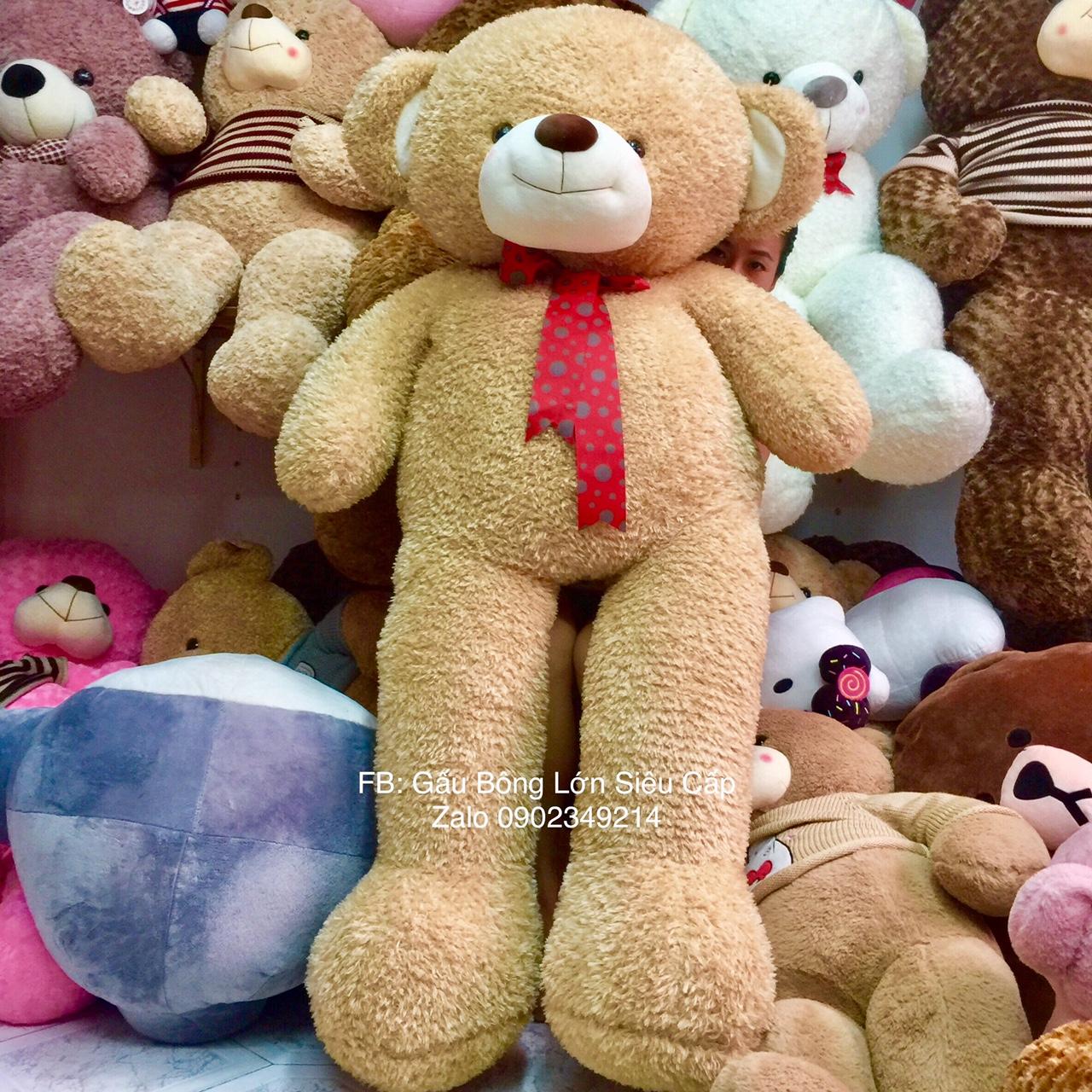 gấu Teddy lông tuyết HQ cà phê sữa 1m9
