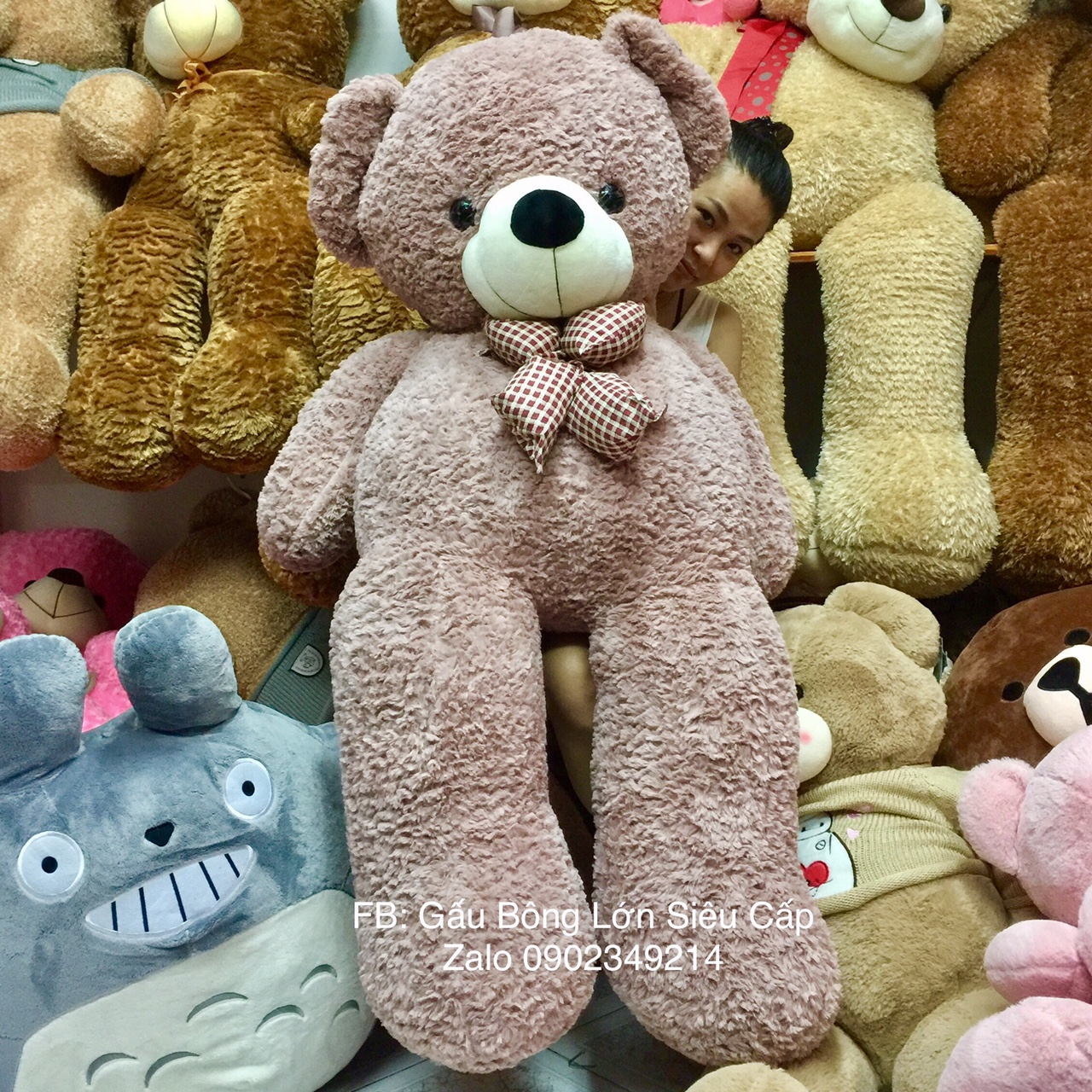 Gấu Teddy Rượu Nơ 1m7