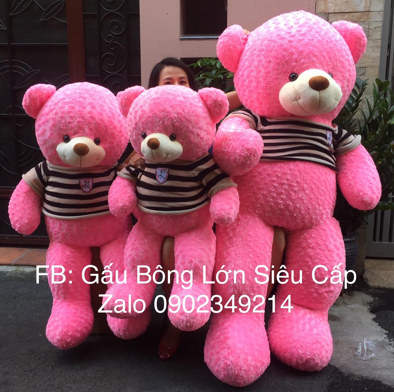 Gấu teddy to VNXK mặt cực xinh 1m6